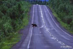 009-Canada-Alaska-British_Columbia