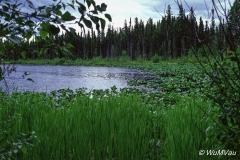 011-Canada-Alaska-British_Columbia