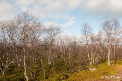 2012Norwegen-0008
