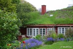2013Island-0004
