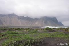 2013Island-0015