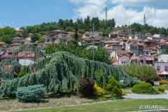 2014Albanien-0048