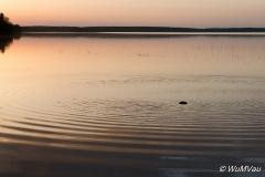 2015russland-0014