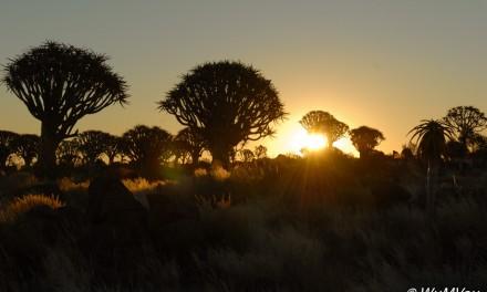 2009 Namibia