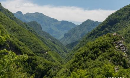 2014 Albanien